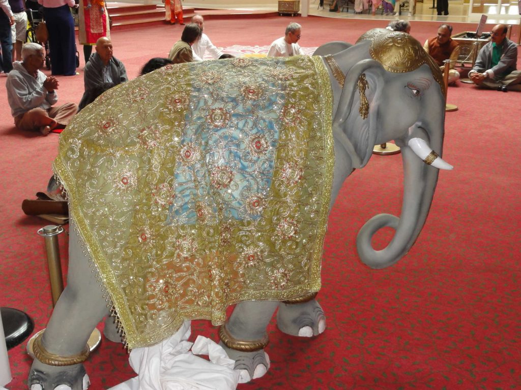 elephant-guard